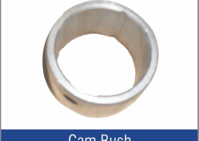 Cam Bush