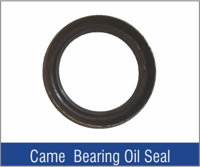 Came Bearing Oil Seal